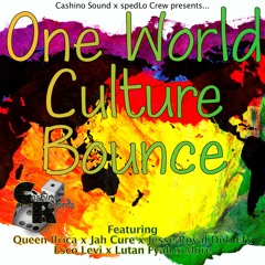 One World Culture Bounce