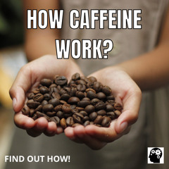 How Are The Effects Of Caffeine?