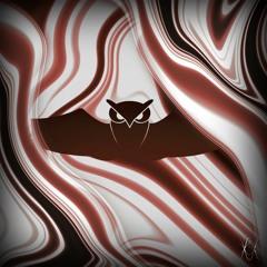 TT Premiere: RAVST - Nightowl [Standing Wave Records]