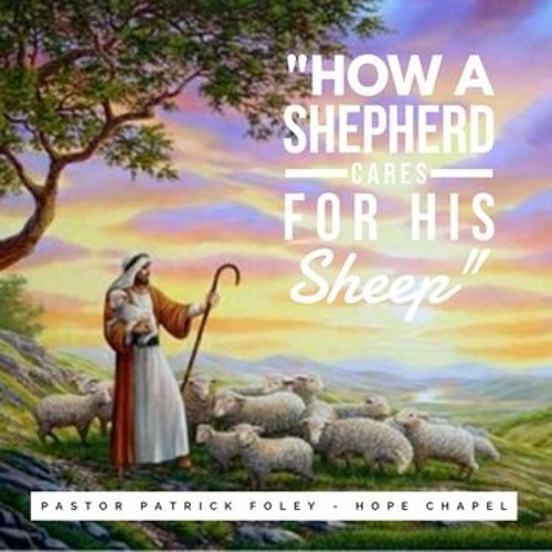 How A Shepherd Cares For His Sheep  - Pastor Patrick Foley - February 16, 2020 - Mixed Track
