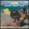 Download Beach Party Mix 2019 (Top40 Dance Remixes) Mp3