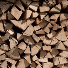 Making Firewood - 5/5/2020 - Makholma Harbor