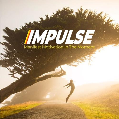 Impulse Manifest Motivation Self Help PLR Audio Sample