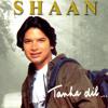 Shaan Se