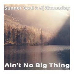 Sunner Soul & dj ShmeeJay -  Ain't No Big Thing