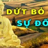 Mỗi Tối Bất An Lo Âu Nghe Phật Lý Giải Tại Sao Hạnh Phúc Không Tìm Đến Bạn Cách Hóa Giải Tâm Đố Kỵ