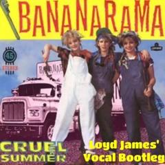 Cruel Summer - Bananarama (Loyd James' Vocal Bootleg)(Free Download)