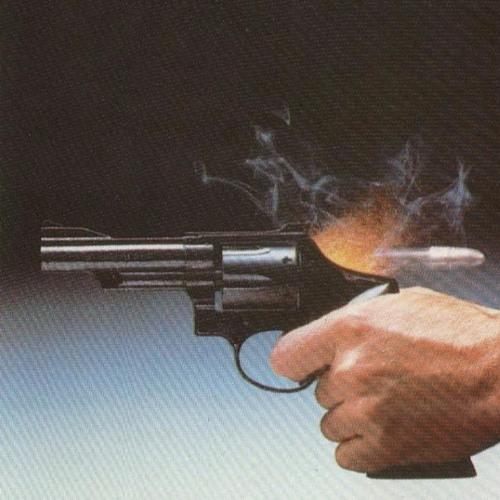 SHOOT ME (demo version)