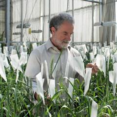 3.2 - Mejoramiento genético de plantas