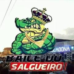 == MC PQD AO VIVO NO BAILE DO SALGUEIRO == {{ DJ BRANKIINHO DO SALGUEIRO }}