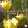 Your Brain and Meditation - Reiki Healing Music, Spiritual Healing, Your Body, Your Mind and Your Soul
