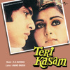 Hum Jis Raste Pe Chale (Teri Kasam / Soundtrack Version)