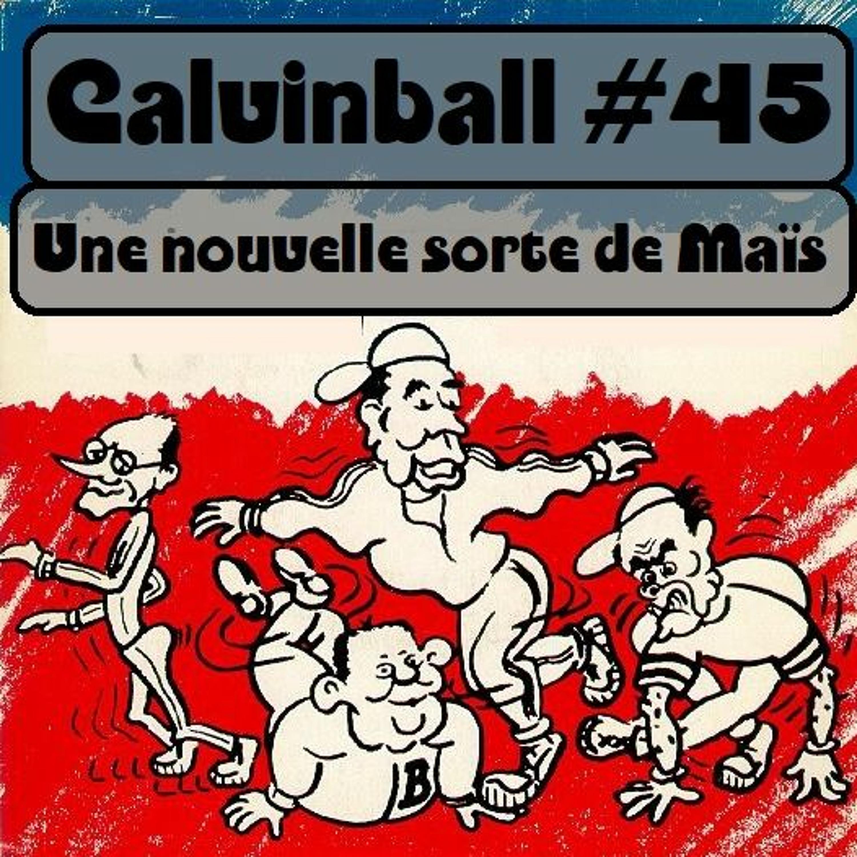 Calvinball #45