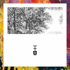 PREMIERE: Friz07 — White Nut Trees (Original Mix) [Empore Music]