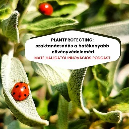 Plantprotecting: szaktanácsadás a hatékonyabb növényvédelemért
