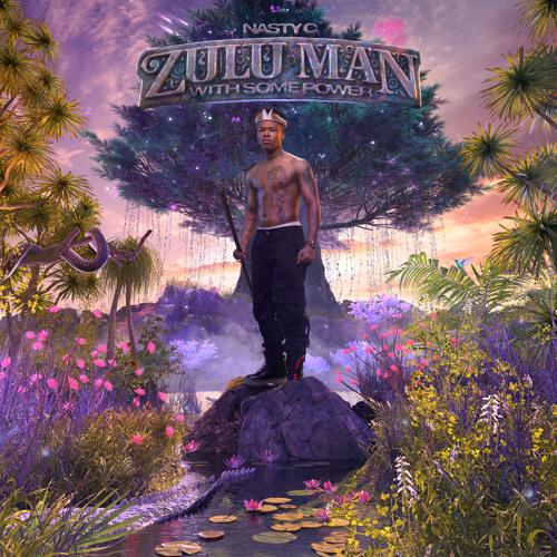Zulu Man With Some Power