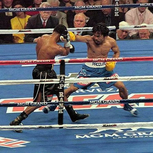 Review the unification that wasn't (Charlo/Castano)/Plus, seeking your opinions.