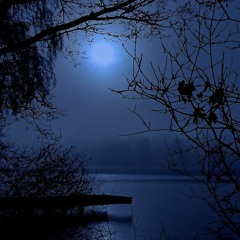 Only Moonlight