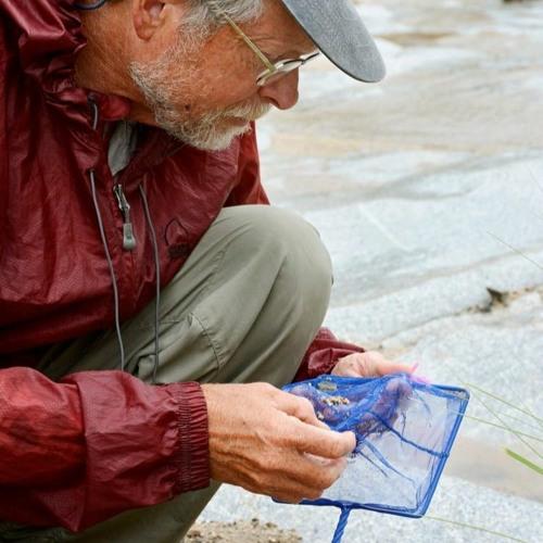 Talk+Water Podcast 19, Larry Stevens, Springs Stewardship Institute