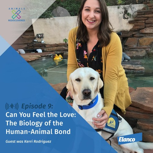 Episode 9: Can You Feel the Love: The Biology of the Human-Animal Bond