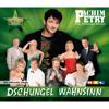 Wahnsinn (Live)
