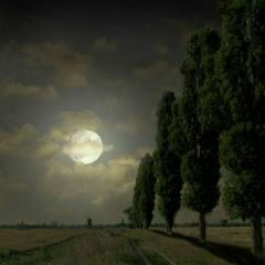 Elias Rahbany - Moonlight Sonata