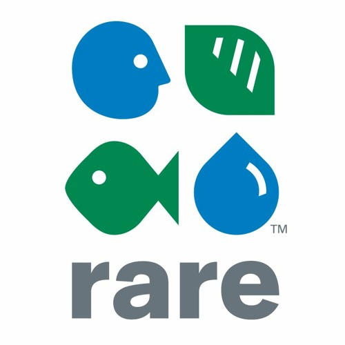 Score Values: Kevin Green of Rare shares planet-saving tips