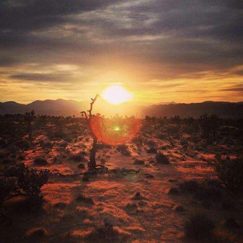 Alex Tolstey (Boshke Beats)live set recorded in Joshua Tree 2018 pt. 1 Acid Sunset