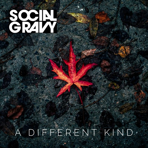 A Different Kind by Social Gravy