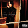 Mutilation Is The Most Sincere Form Of Flattery (Album Version (Explicit))