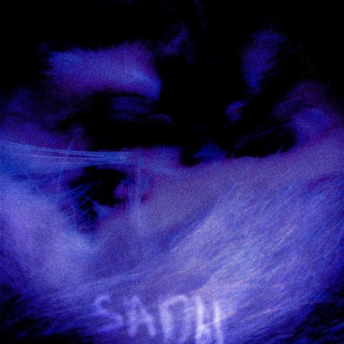 asan j~ emotions   made on the Rapchat app (prod. by sadbl)