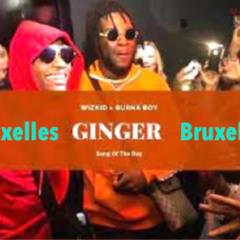Wizkid Ft. Burna Boy - Ginger (Bruxelles Refix) BUY = FREE DOWNLOAD!