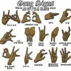 Gang Lyfe