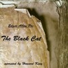 The Black Cat - Part 31