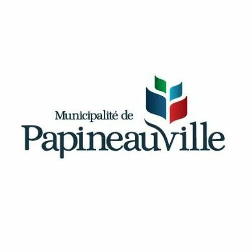 Conseil Municipal 12 Mai 2020 Papineauville
