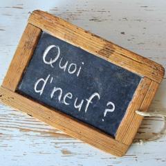 Quoi D'Neuf #4 - Ciné'Actuel - Pixel - Rencontre du court-métrage (11.05.21)