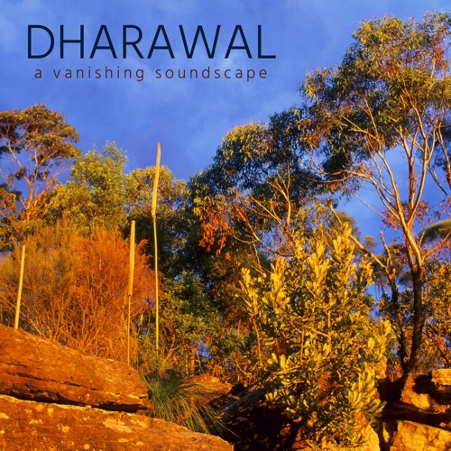 Dharawal: Excerpt from nature soundscape recorded in Dharawal National Park, Australia