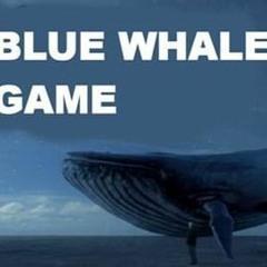 Operation Blue Whale DJ Persona Non Grata