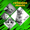 Music for Cat