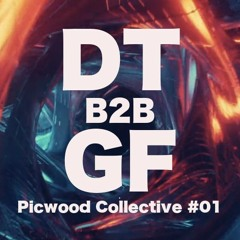 Picwood Collective #01 - DT B2B Groove Formula