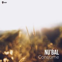 Consume (original Mix)