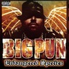 John Blaze Fat Joe featuring Big Pun, Nas, Raekwon, Jadakiss