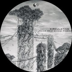 Julius Beat, Cami Pineda - Circulating (Extended Mix) [Dragon Records]