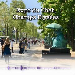 Champs Elysées, Expo Du Chat