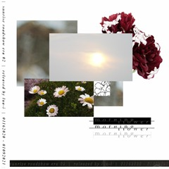 world's last garden - morning flower (echoed. remix)