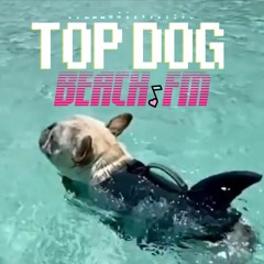 Top Dog Beach Club Mix