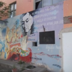 Patricio Seguel (Centro De Residentes Violeta Parra)