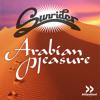 Arabian Pleasure (Electro Radio)