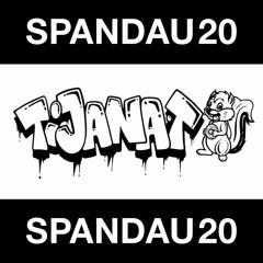 SPND20 Mixtape By Tijana T