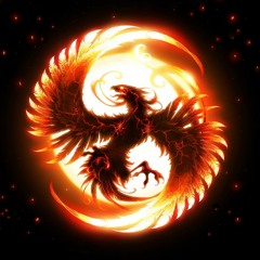 MOTIF - Phoenix